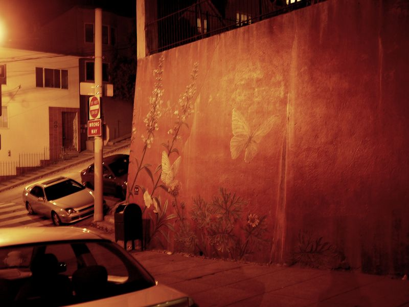 Butterfly Mural at Night